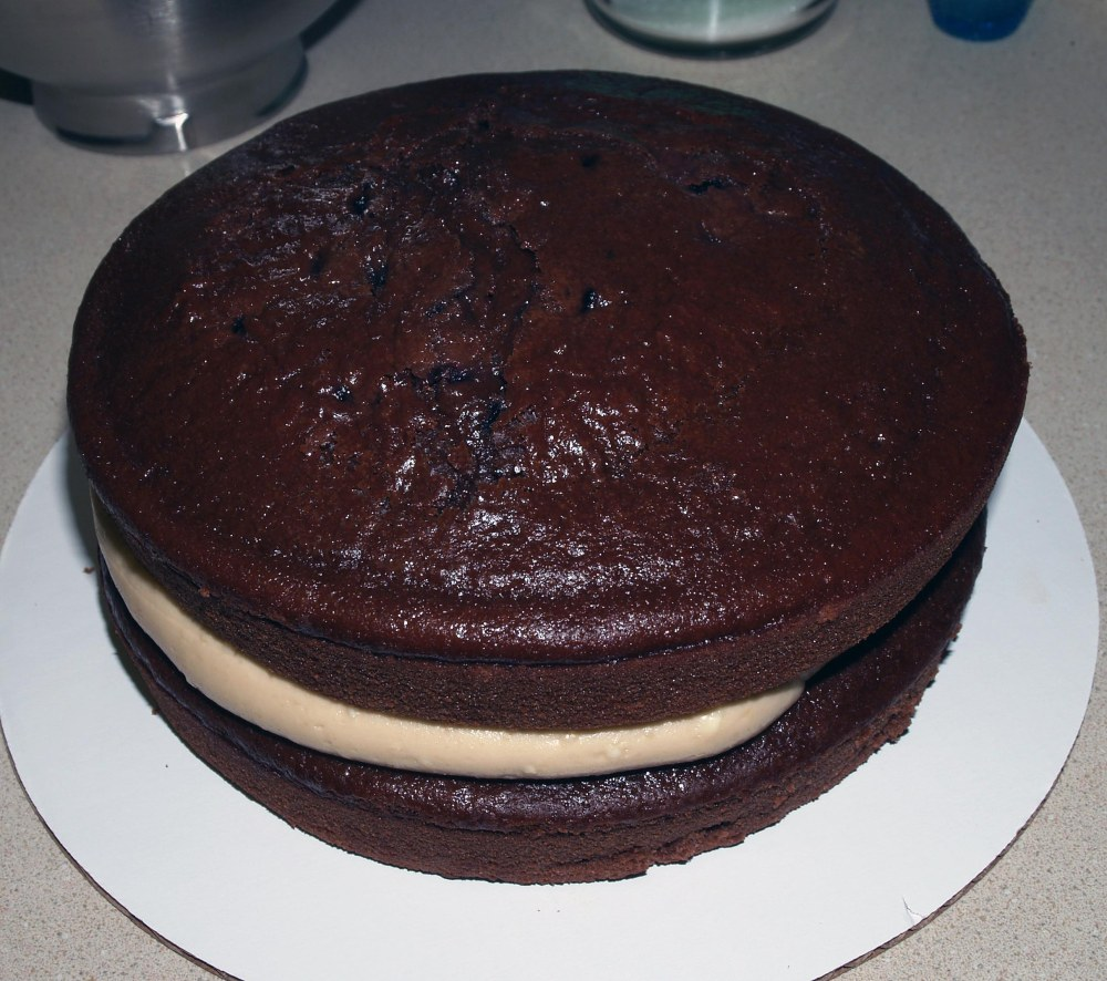 two layers of chocolate cherry cake