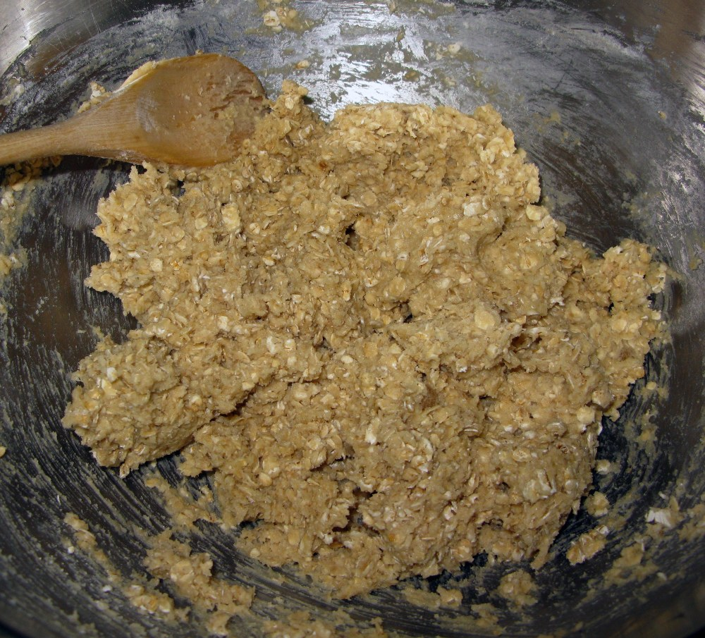 Turtle Oatmeal Cookie Base Dough