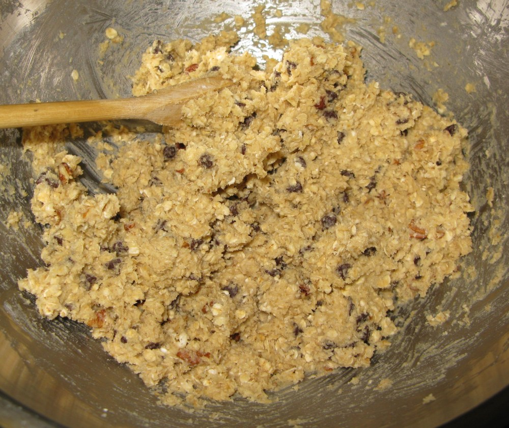 Turtle Oatmeal Cookie Dough with Mix Ins