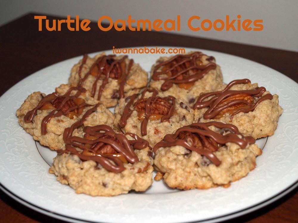Turtle Oatmeal Cookies