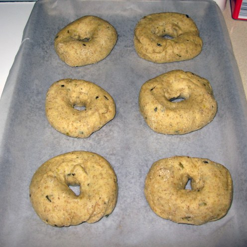 Bagels After Rising