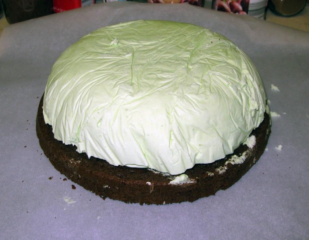 Unmolded Ice Cream and Cake Plastic Removed