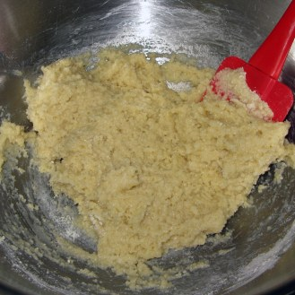 Mixing Almond Flour Mixture 2