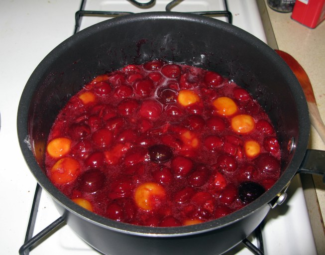 Thickened Cherry Mixture 1